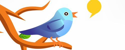 How to Increase your Twitter Followers ?
