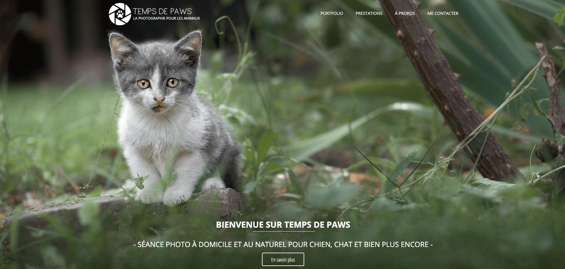 temps de paws site en ligne