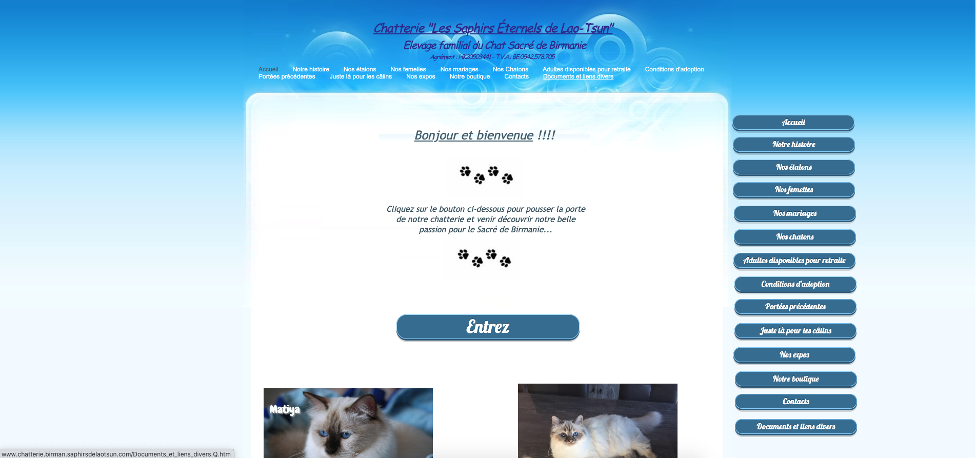 Site exemple animaux