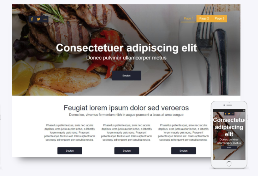 exemple template sitew