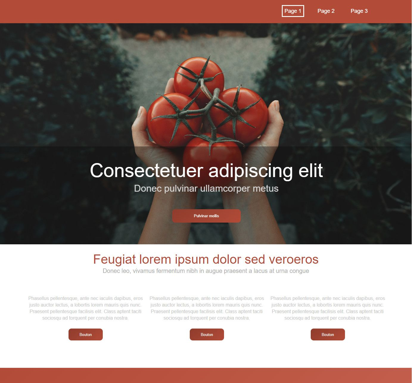 Theme for website creation of Tomato