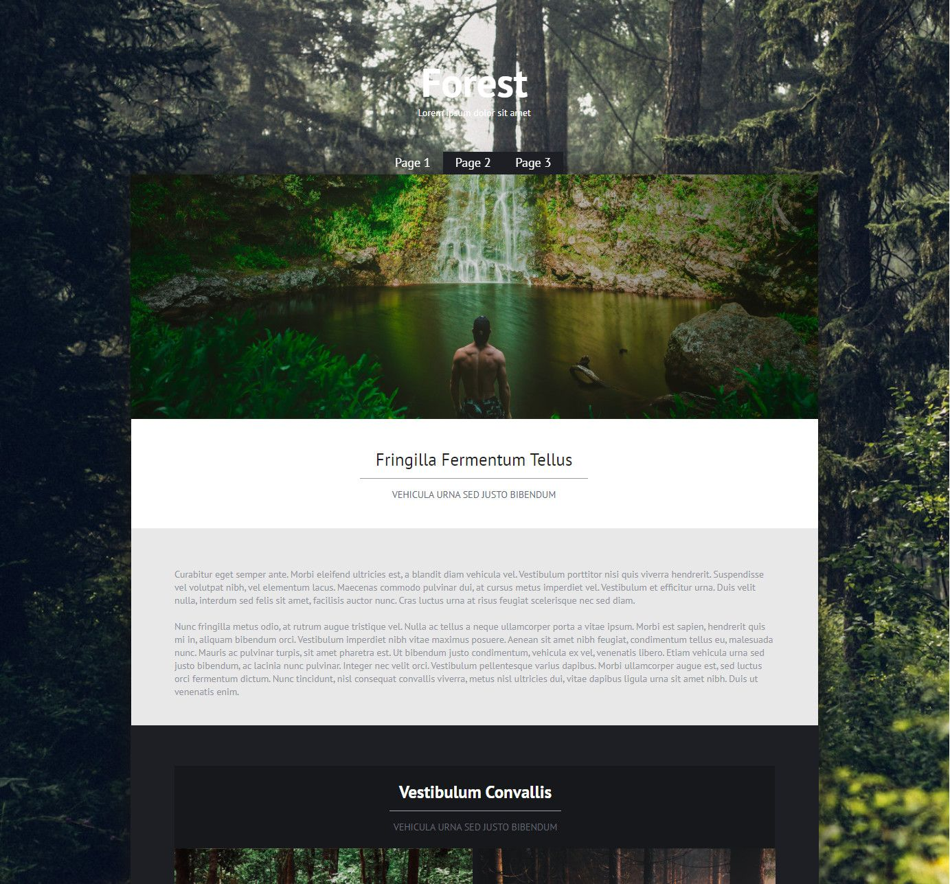 Theme for website creation of Forest