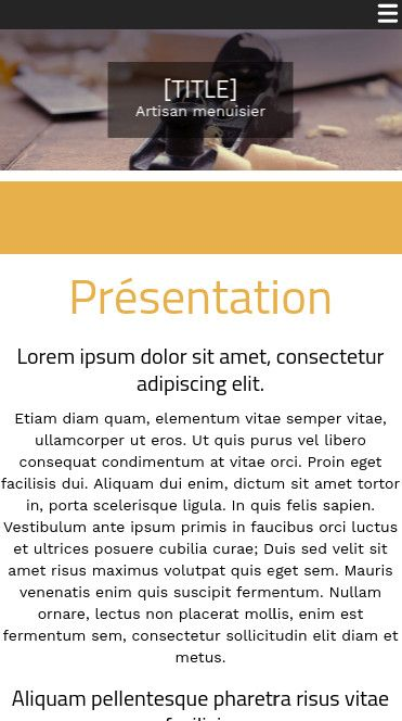 Mobile theme for easy website creation of Menuisier